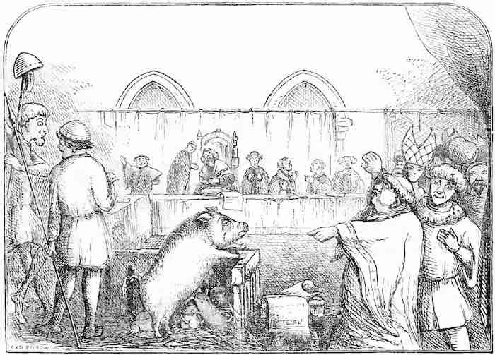 フランスの動物裁判:ブタの例